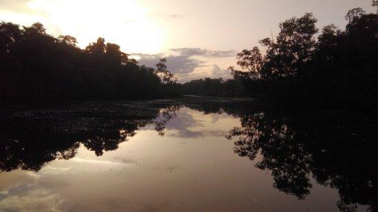 Дельта реки Ориноко, Венесуэла: P_20170811_062705_large.jpg