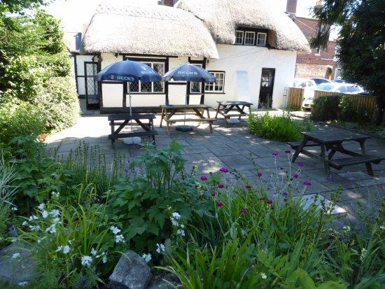 Ringwood, UK: Garden