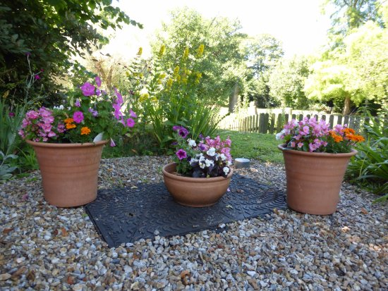 Ringwood, UK: Flower Pots in Garden