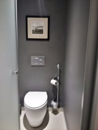 Protea Hotel by Marriott OR Tambo Airport: ...the toilet area