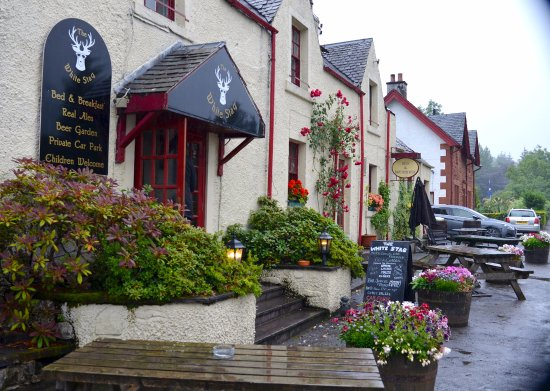 Strathyre, UK: Too rainy for the outdoor seating, but it's nice to have the option