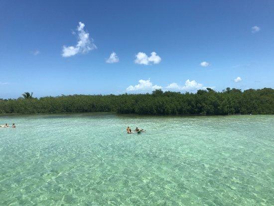 Sugarloaf Key, FL: photo3.jpg