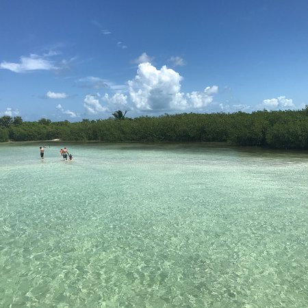 Sugarloaf Key, FL: photo8.jpg