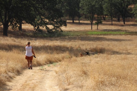 โกรฟแลนด์, แคลิฟอร์เนีย: walk in the woods