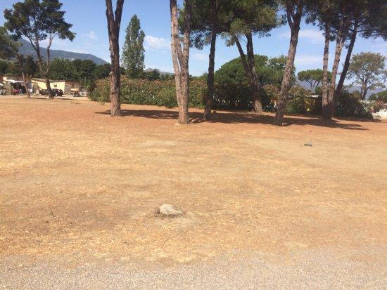 Castellare-di-Casinca, France : Vacances aout 2017