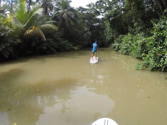 Punta Uva, Costa Rica: photo4.jpg