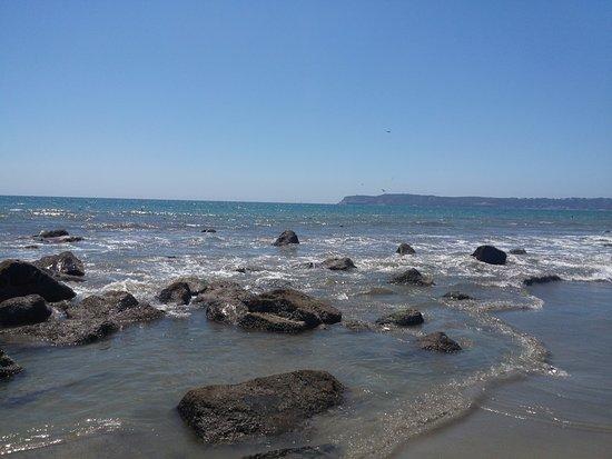 Coronado, CA: Beach view
