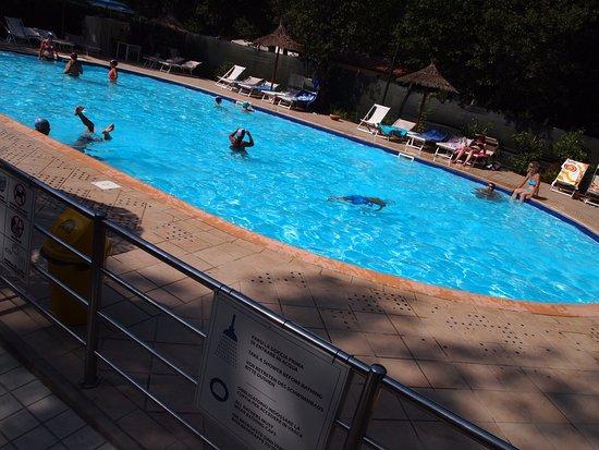 Bosco verde camping torre del lago puccini olaszorsz g for Disposizione del piano piscina