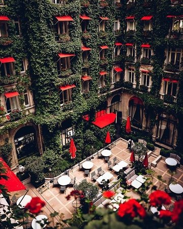 La cour jardin paris champs lys es restaurant reviews phone number photos tripadvisor - La cour jardin plaza athenee ...