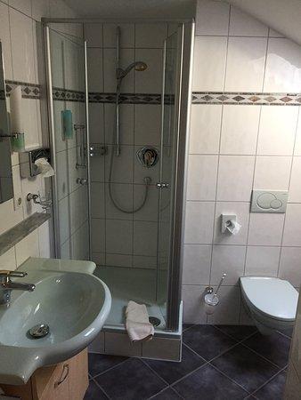 Hotel Langenwaldsee : photo1.jpg