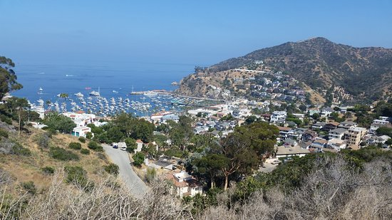 Catalina Electric Bike Tours Avalon All You Need To