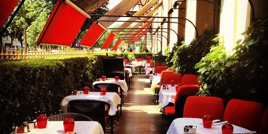 la terrasse montaigne paris champs elysees restaurant reviews phone number photos. Black Bedroom Furniture Sets. Home Design Ideas
