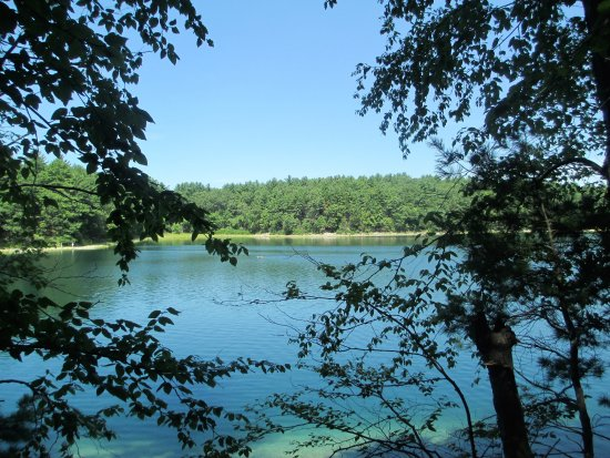 Concord, MA: pond from trail