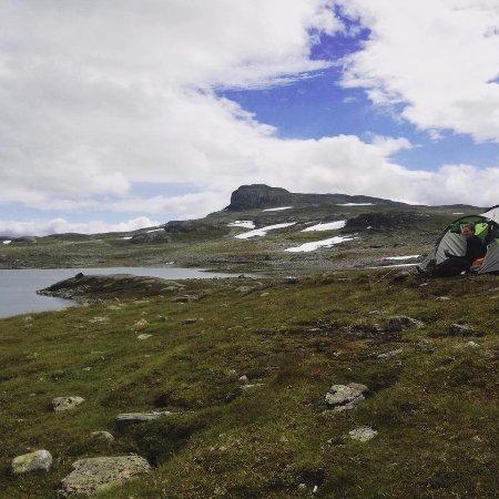 Hardangervidda National Park: Rett ved Mannevatn