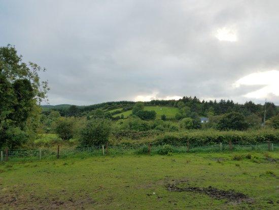 Tulla, Irlandia: 20170811_150520_large.jpg