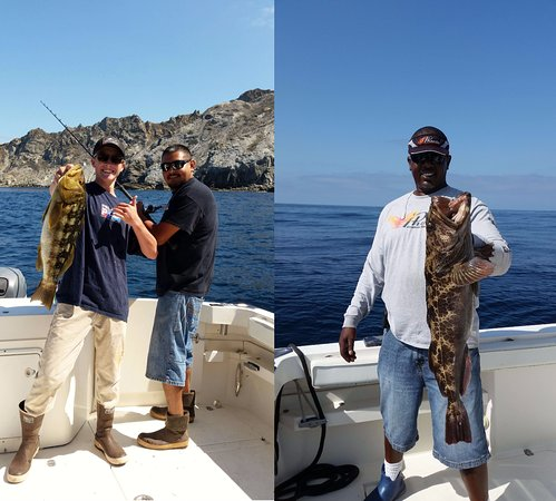 Great deep sea fishing in los angeles ca nh c a la for Deep sea fishing los angeles