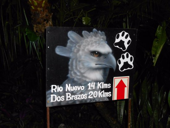 Carate, Costa Rica: Harpy Eagle trail head.