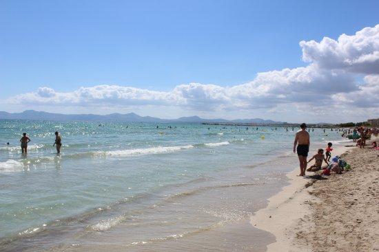 Playa de Muro Beach Picture of Playa de Muro Beach Playa de Muro