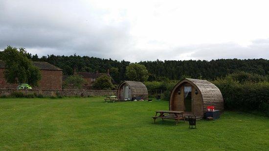Kirkoswald, UK: 20170818_091504_large.jpg