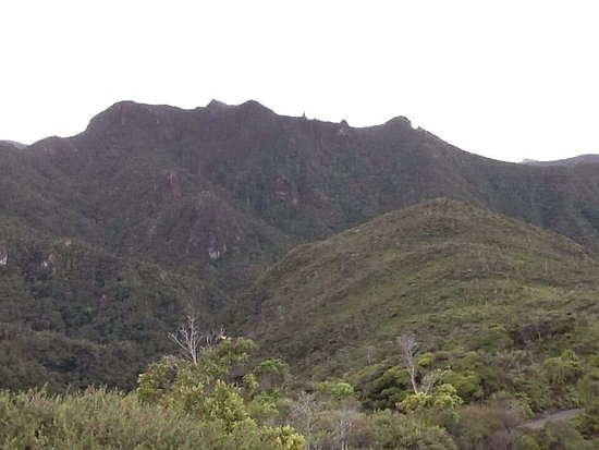 Great Barrier Island, Selandia Baru: photo0.jpg