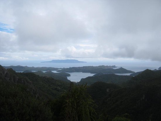 Great Barrier Island, Nya Zeeland: photo2.jpg