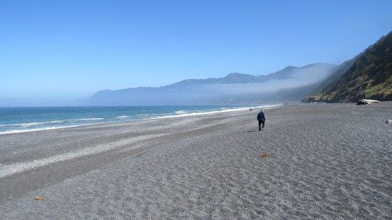 Shelter Cove, CA: The beach