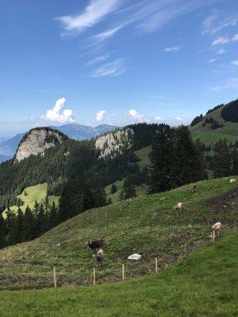 Bergbahnen Beckenried-Emmetten AG: photo0.jpg