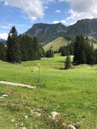 Bergbahnen Beckenried-Emmetten AG: photo1.jpg