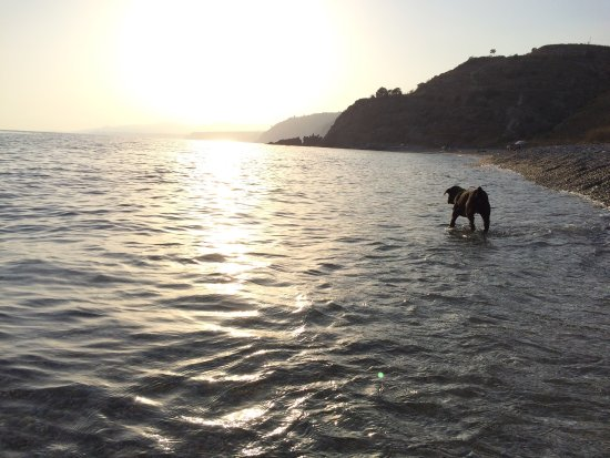 Maro, Hiszpania: photo1.jpg
