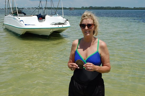 Cortez, FL: Sand dollar on the sand bar, Captain Kim's boat in the background
