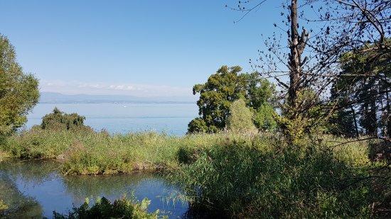 Evian-les-Bains, France: 20170818_111944_large.jpg