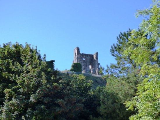 Corfe Castle from the woodland walkway.