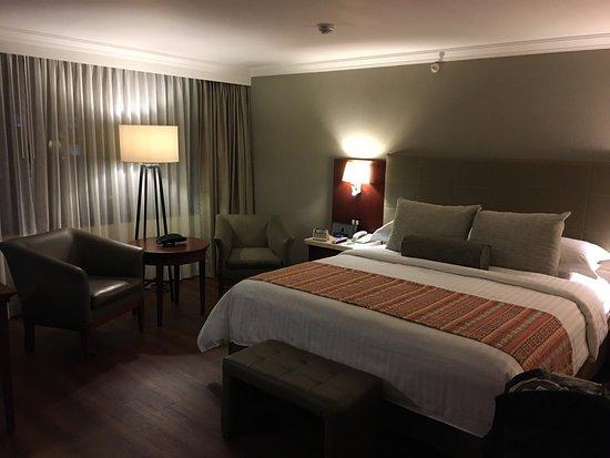 Bogota Plaza Summit Hotel: photo0.jpg