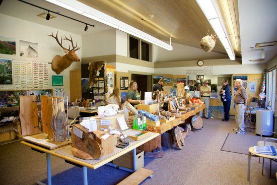 Castle Rock, WA: Inside the learning centre - Educational exhibits