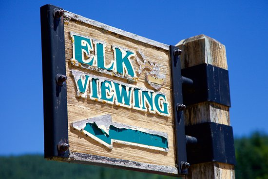 Castle Rock, WA: Take advantage of the Elk viewing and the telescopes provided