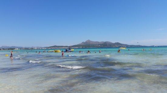 20170727Majorka 3largejpg Picture of Playa de Muro Beach