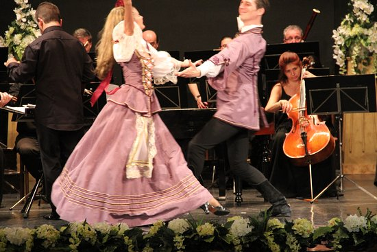 Danube Palace: Hungarian music and dance...