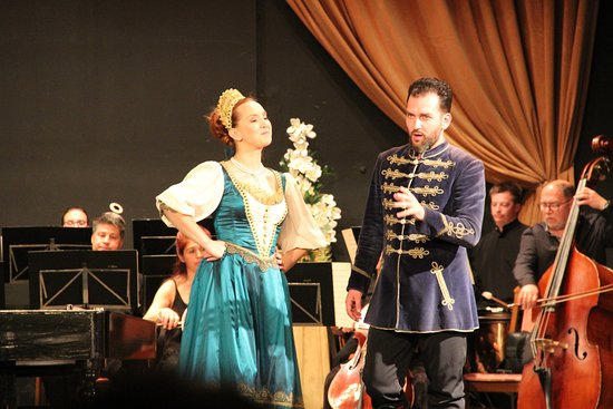 Danube Palace: musicians are of high calibre...