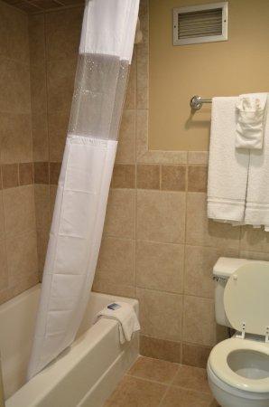 Fort Dodge, Αϊόβα: Queen w/Sofa Sleeper Bathroom