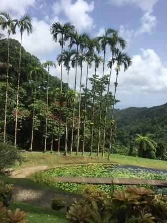 Balata Gardens: photo2.jpg