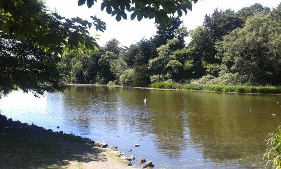 Kiltonga Nature Reserve