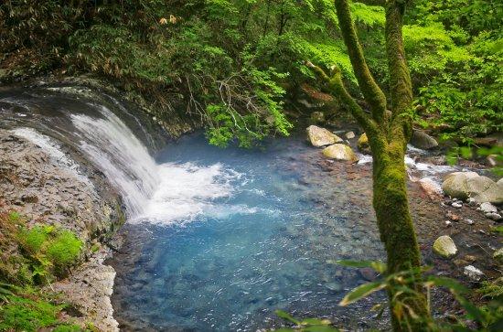 Komorebi Falls