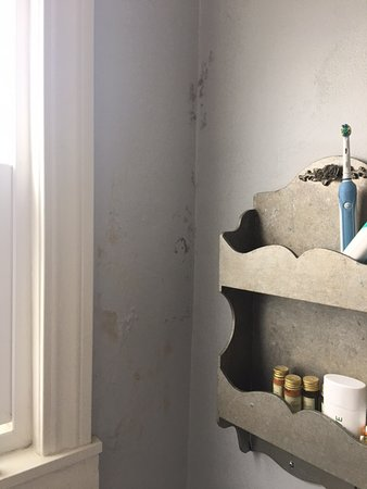 Casablanca Inn on the Beach: Mold growing in bathroom