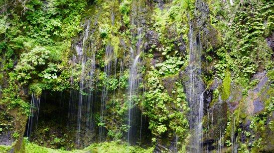 Kiso-machi, Japón: 不易の滝(中段)