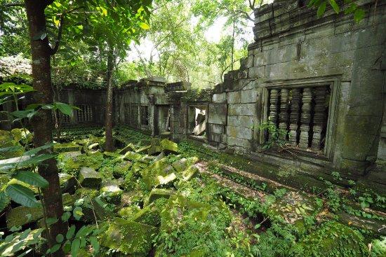 Провинция Сием Рип, Камбоджа: 緑の中の遺跡