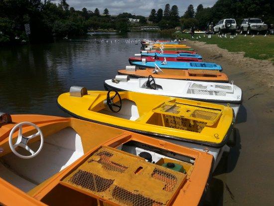 Lake Pertobe Motor Boats