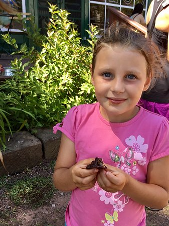 Victoria, แคนาดา: Ooey,gooey chocolate