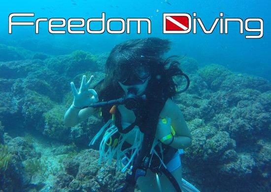 Playa Samara, Costa Rica: Freedom Diving