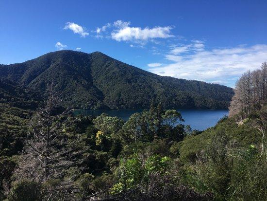 Picton, New Zealand: photo6.jpg