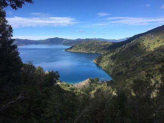 Picton, New Zealand: photo7.jpg